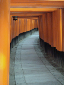 Image of Shinto Torii path